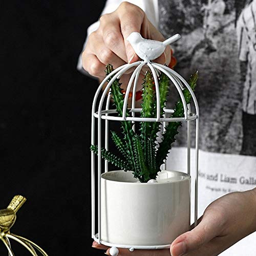 Metal Bird Cage Flower Stand and Pot, for Succulents, Cactus and Small Plants - White Cage