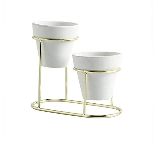 Clear Pots Modern Metal Flower Stand and Pot, for Succulents, Cactus and Small Plants