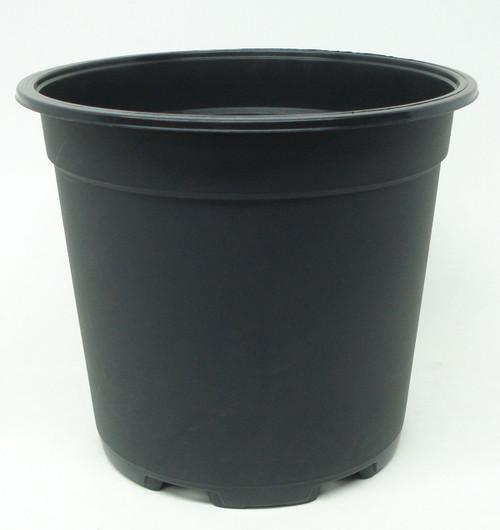 Teku azalea Pot - Black Plastic - Quantity of Ten (10)