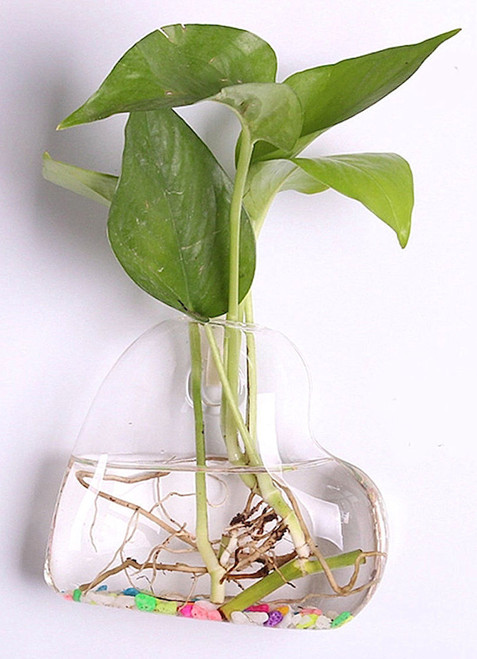 Terrarium / Hydroponic Glass Planters Wall Hanging Flower Vase - Style G