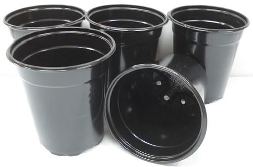 Black Plastic Starter Pot for Plants 5 inch Diameter - Quantity 25