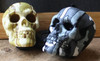 Camoflage Skull: Jungle,Urban,Desert Shift Knob