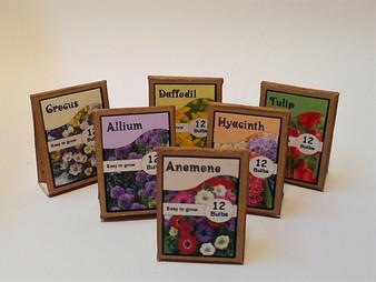 Kit - Spring Bulb packs x 6
