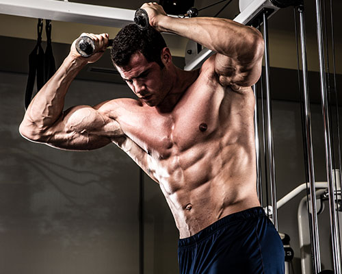 Game-Changeing Musclebuilding Formula