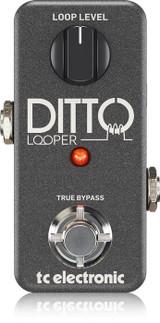 Ditto Looper TC-DITTO Tone Lounge NZ