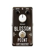 Blossom Point V2