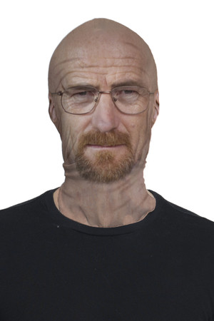 Breaking Bad Walter White Mask