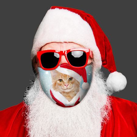 Santa Cat Face Mask
