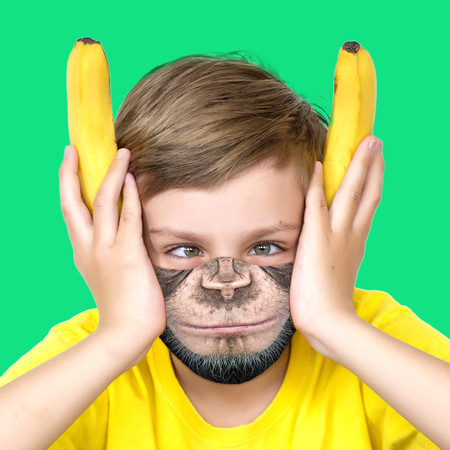 Youth Monkey Face Mask