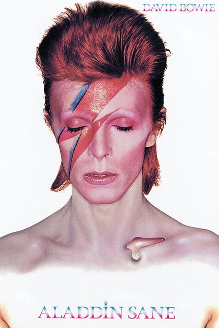 David Bowie Aladdin Sane Poster.