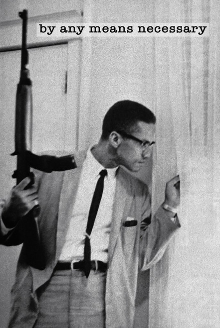 Malcolm X Poster.