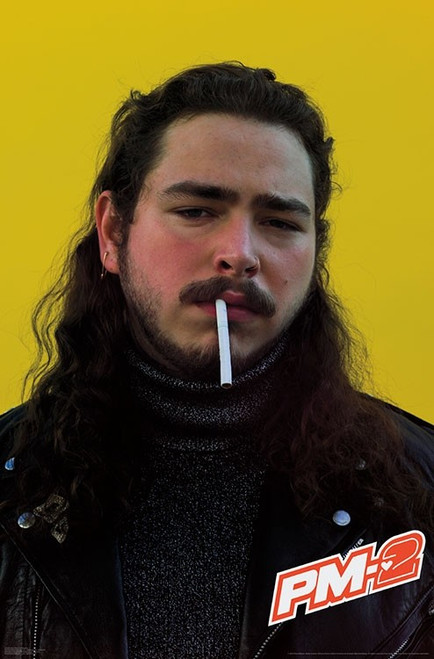 Post Malone Poster.