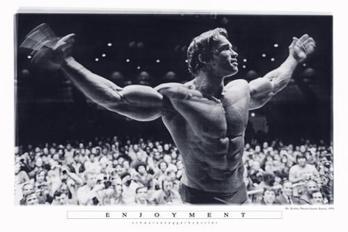 Arnold Schwarzenegger Poster.
