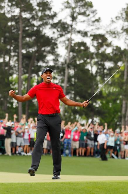 Tiger Woods Poster.