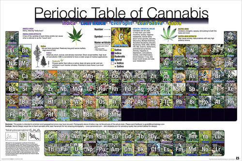 Periodic Table of Cannabis Poster.