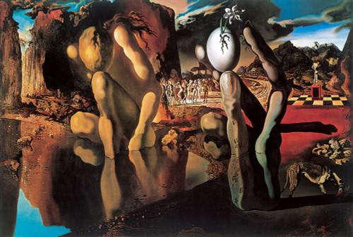 Metamorphosis of Narcissus Poster.