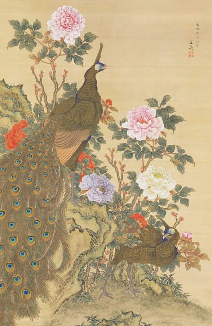 Peacocks and Peonies.