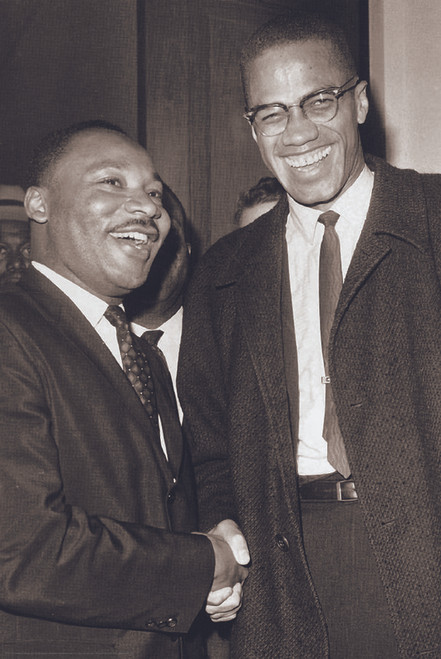 MLK and Malcolm X Poster.
