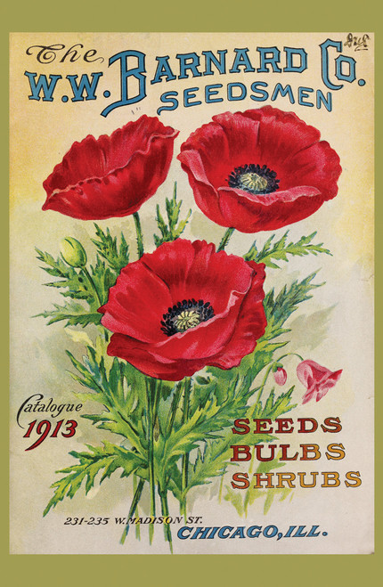 Vintage seed packet with red flowers.