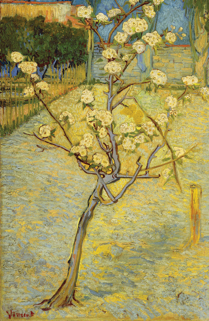 Van Gogh Small Pear Tree in Blossom.