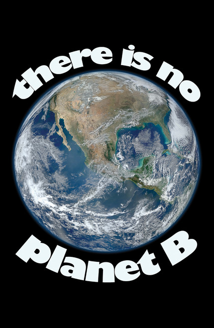There is no planet B earth.
