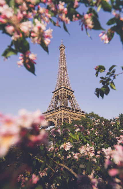 Eiffel Tower with flowers.