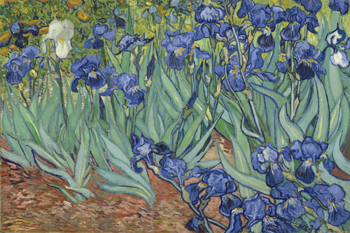 Irises by Van Gogh.