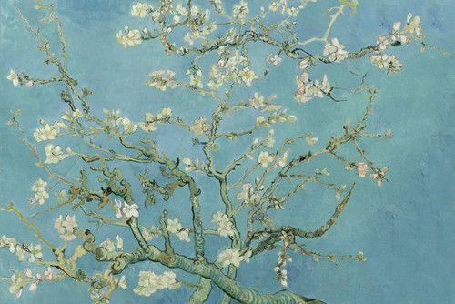 Almond Blossom by Van Gogh.