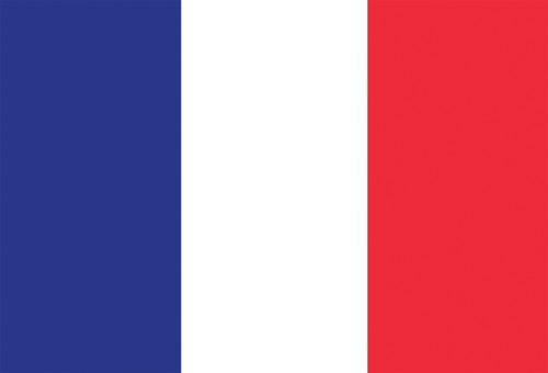 French flag postcard.