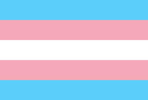 Trans pride flag postcard.