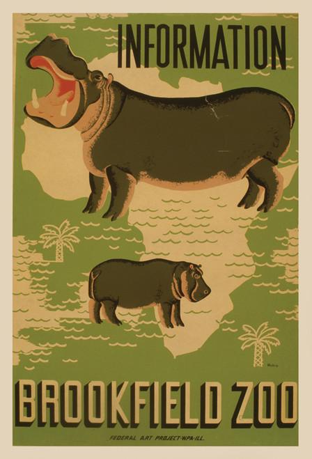 Brookfield Zoo Hippo Postcard.
