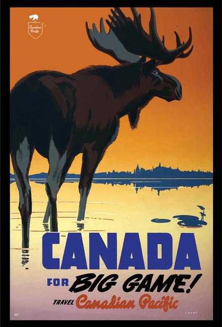 Canada Moose Postcard.