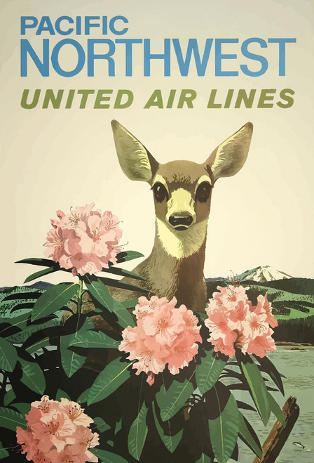 Deer Pacific NW United Airlines Postcard.