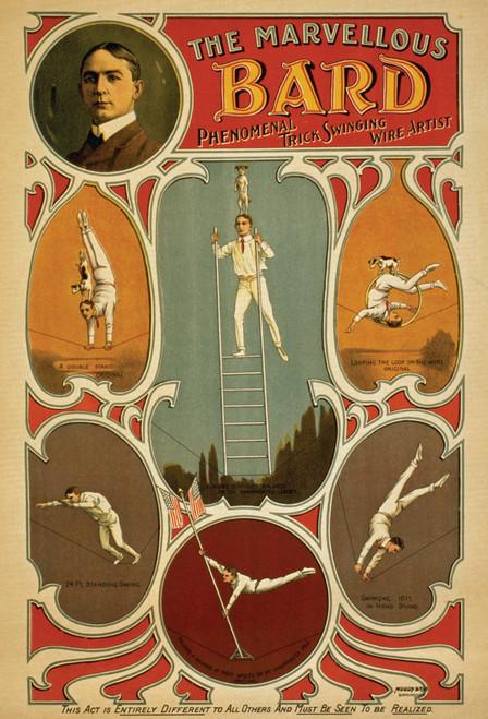Marvelous Bard Postcard.