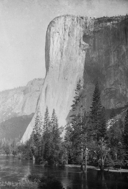 Yosemite El Capitan Postcard.