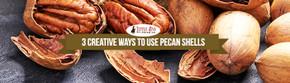 3 Creative Ways To Use Pecan Shells