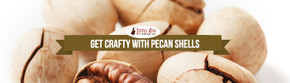 Get Crafty with Pecan Shells