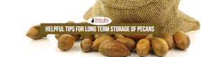 Helpful Tips For Long Term Storage Of Pecans
