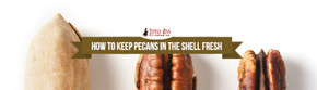 How To Keep Pecans In The Shell Fresh