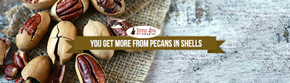 You Get More From Pecans In Shells