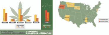 2020 US Election: Adding More Legalization
