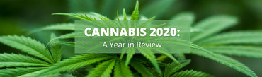 Cannabis 2020: A Year in Review