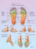 Foot Reflex Zone Massage Poster