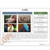 COPD Anatomical Model Description Card