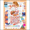 Blueprint for Health Your Digestive System Anatomy Chart
