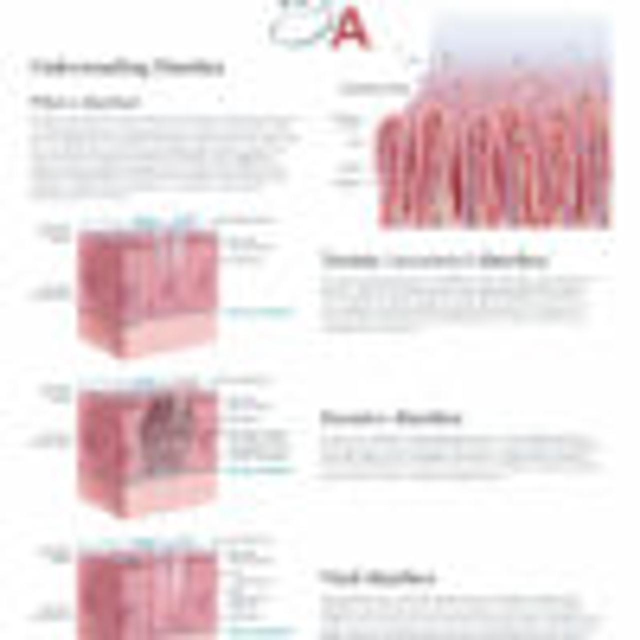 Digestive System Flip Chart