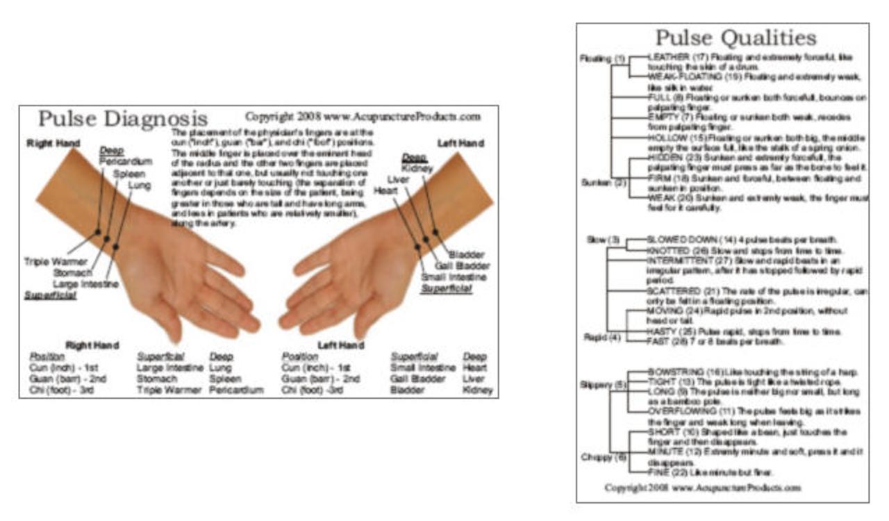 Pulse Diagnosis Acupuncture Card