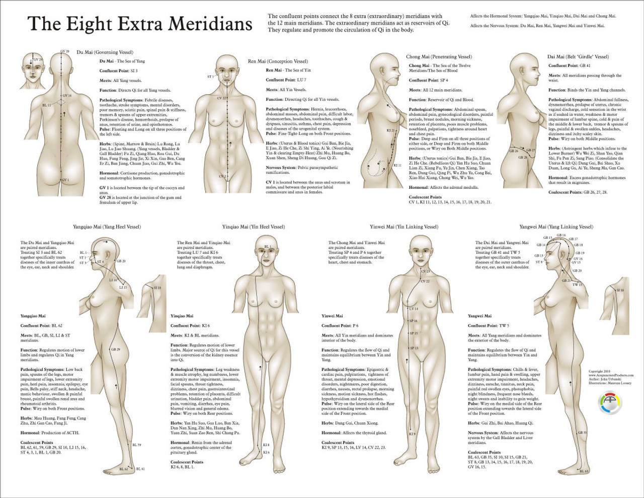 eight extra acupuncture meridians chart clinical charts and supplies rh clinicalcharts com  chinese meridians chart