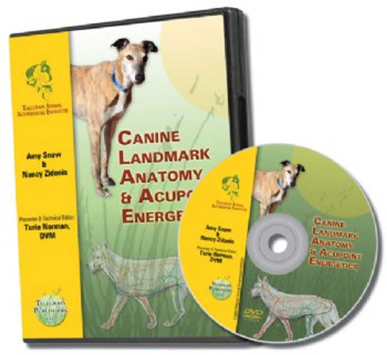 Canine Acupoint Energetics & Landmark Anatomy - DVD