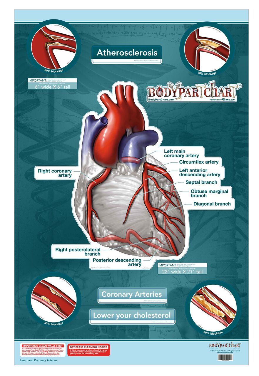 Heart Wall Poster